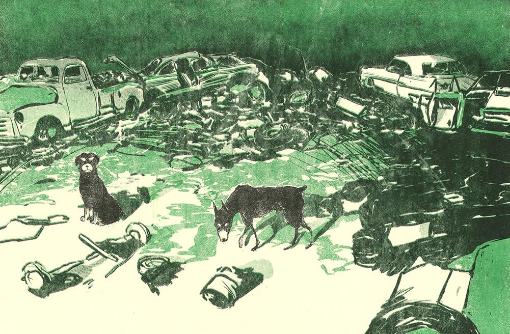 junkyard_dogs_web